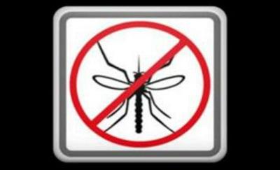 mosquitos_nor-672xxx80