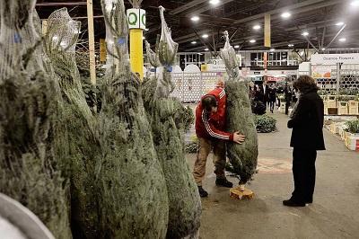 New Covent Garden Flower Market Gears Up For Christmas